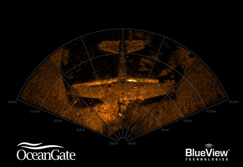 2D sonar view of Hellcat aircraft