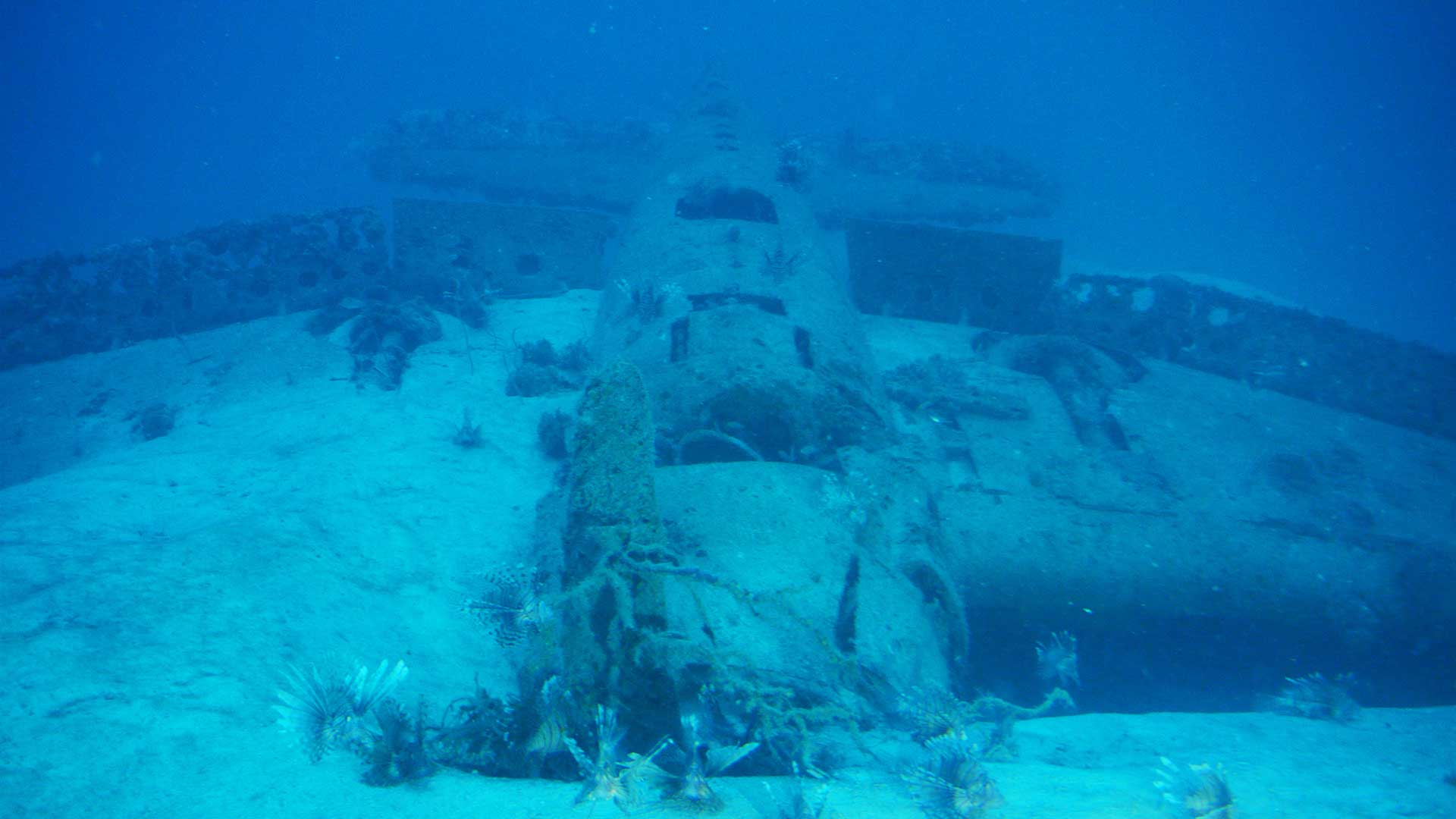 Photo of the F6F Hellcat on the sea floor